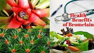 6 Unbelievable Health Benefits of Bromelain