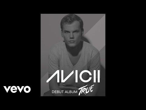 Avicii - Hey Brother (Audio)