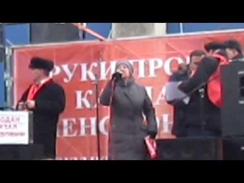 Меркушкина гнать в Мордовию Митинг в Самаре