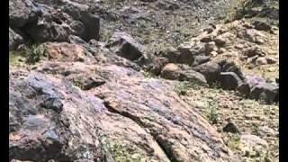 2 часть.Кабул.гора Ходжа Раваш.ВДВ.350 ПДП,103ПДД,