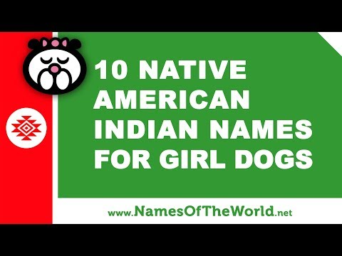 10 Native American Indian Names For Girl Dogs - The Best Pet Names - Www.namesoftheworld.net