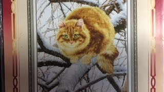 Вышивка крестиком. Рыжий кот, золотое руно. Отчёт 2