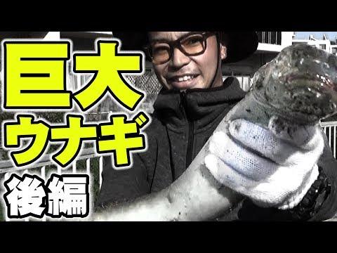 沖縄の巨大ウナギの釣り方【後編】【オオウナギ】
