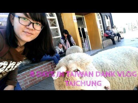 8 DAYS IN TAIWAN 2017 dank vlog (2/3) - Taichung