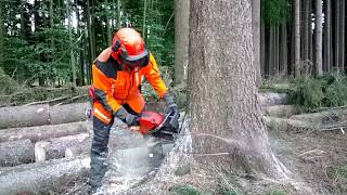 Chainsaw Husqvarna 572 XP Garden and Forest Original YouTube Video