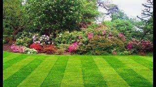 Газон. Подготовка земли к посеву.(Для начала следует определиться, какой бы газон вы хотели вырастить на своем участке? Существует несколько..., 2014-01-23T17:29:17.000Z)