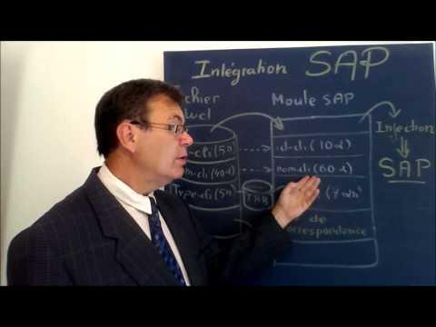 Gestion de Projet Informatique SAP | Organiser l