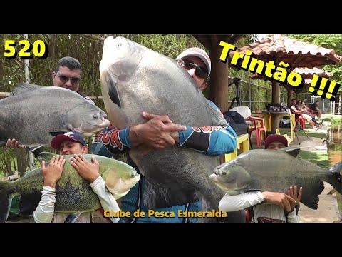 Esmeralda - Pescaria de Gigantes com Trintão nos braços - Fishingtur na TV 520
