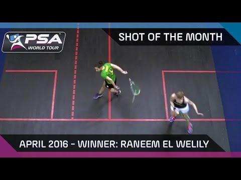 Squash: Shot of the Month - April
