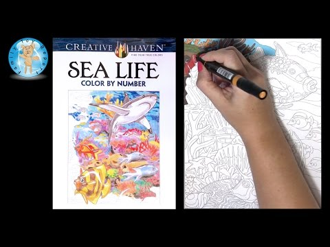 Creative Haven Sea Life Adult Coloring Book Color By Number Fish - Family Toy Report