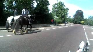 Passing horses on a lowracer recumbent...