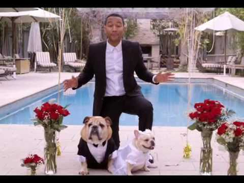 John Legend University of Pennsylvania facts, information, pictures Biography