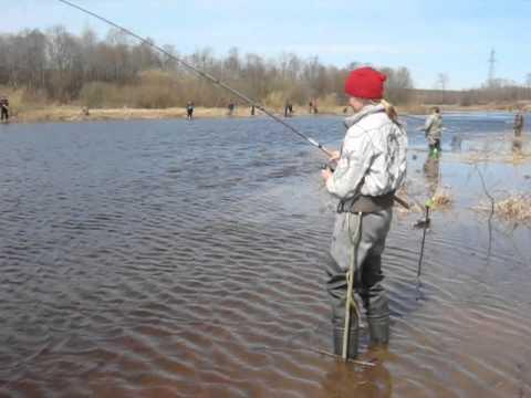 Рыбалка в Рыбинске май 2013