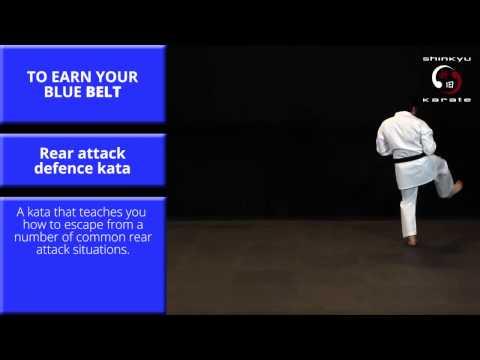 Train At Home:Kata #3 - Rear Attack Defence Kata - Grading to 5th Kyu (Blue Belt)