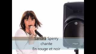 11 SANDRA SPERRY - En rouge et noir
