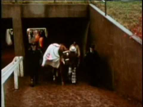 SECRETARIAT - Big Red's Last Race - Part II