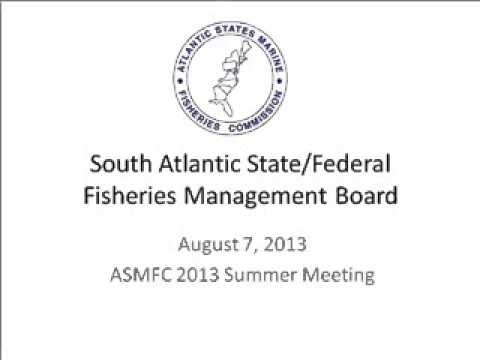 ASMFC Summer Meeting 2013 - South Atlantic Board