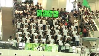 金文泰中學 2016-2017年度水運會 啦啦隊比賽 信社