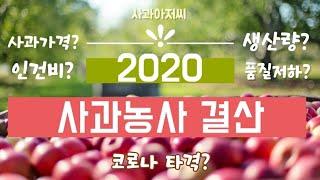 2020년 사과농사 어땠나? 한해를 돌아보며..2020…