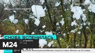 В русле реки Раменки вновь обнаружили пену - Москва 24