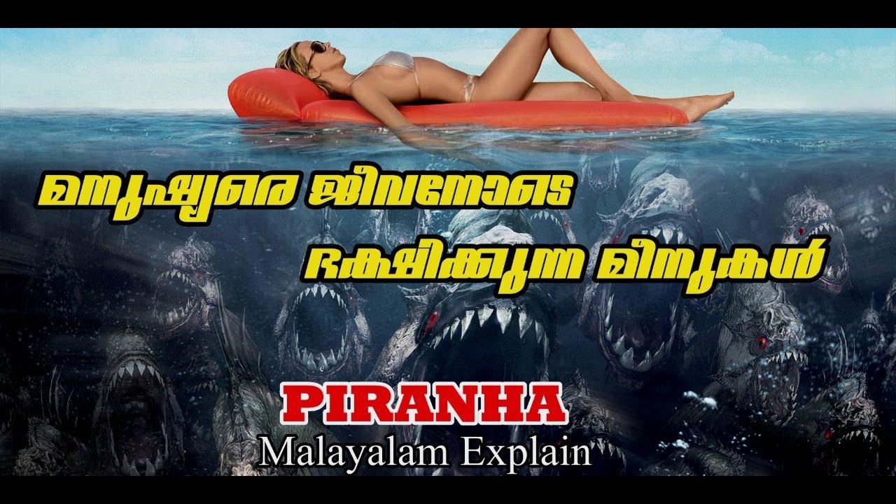 Download Piranha 3D Movie Explain Malayalam   Cinima Lokam...