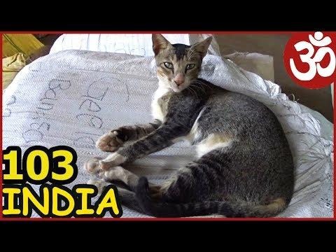 MUMBAI. БЛЕСК и НИЩЕТА. БУТИКИ и ТРУЩОБЫ. HIGH STREET PHOENIX ПОЕЗД В ДЕЛИ India103