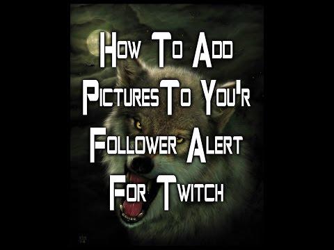 how to get custom twitch alert