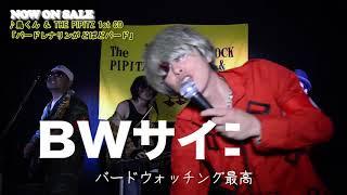 ♪鳥くん&The PIPITZ 'バードウォッチング最高' 1st CD「バードレナリンがどばどバード」 告知用MV(short virsion)EX:ソノライフ、永井真人