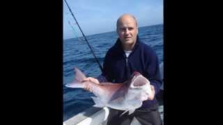 Video Pesca ao Jigg no Nanny 13-04-2013 download MP3, 3GP, MP4, WEBM, AVI, FLV Desember 2017