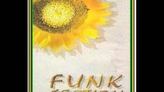 Gambar cover Funk Section - Dipantai Cinta