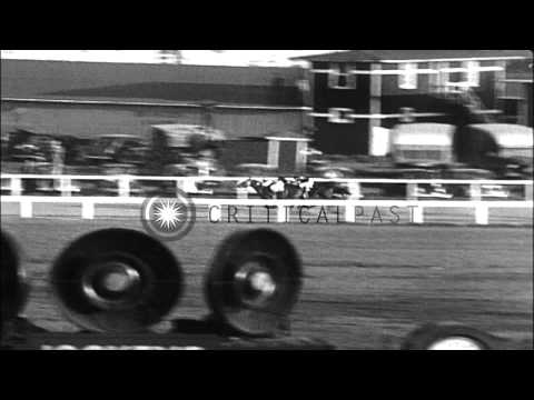 Seabiscuit wins the race at Pimlico Race Course, Maryland. HD Stock Footage
