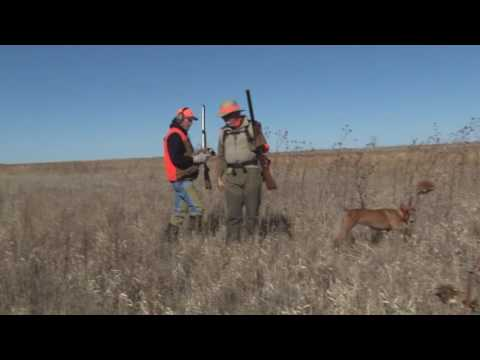 "Episode 80 ""Organic Western Kansas pheasants"""