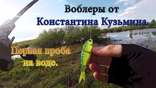 Воблеры от Константина Кузьмина. Первая проба на воде.
