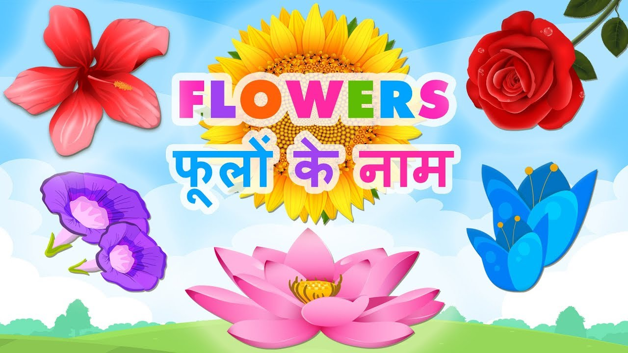 Flowers Name In Hindi फ ल क न म Flowers Name In