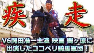 動画の2:21~2:25で紹介した馬の名前は「ニュート」が正しい名前となり...
