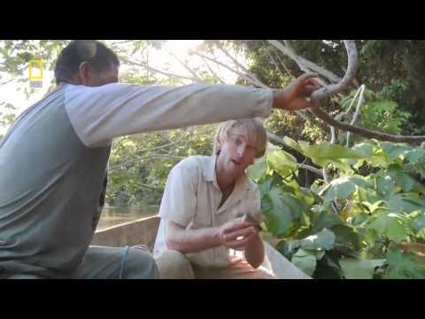 Fish Warrior, fish warrior full episodes, biggest catfish ever caught, Full Fishing Documentary HD