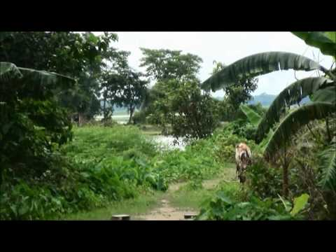Bangladesh Land For Sale, Sylhet