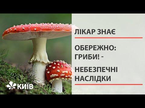 Обережно – гриби: профілактика отруєнь та перша допомога