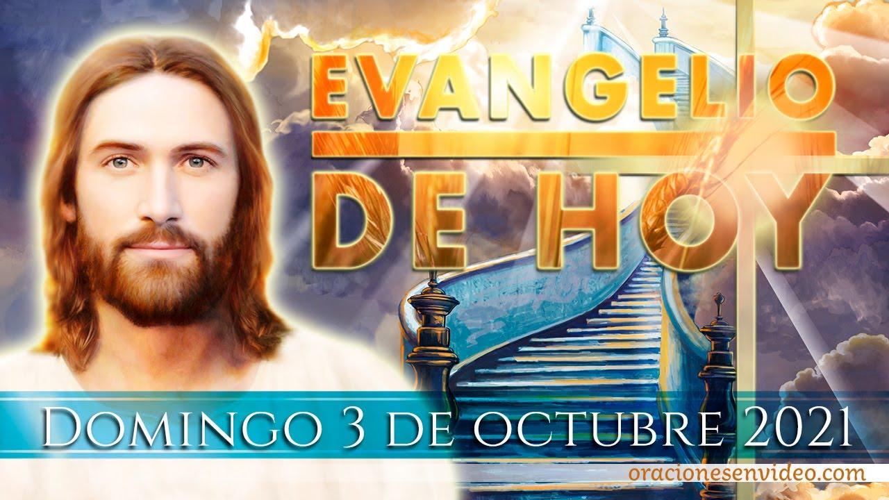 """Download Evangelio de HOY. Domingo 3 de octubre 2021. Mc 10,2-12. """"Dios los hizo hombre y mujer."""""""