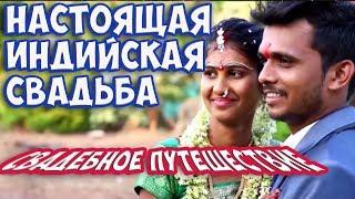 Настоящая индийская свадьба| Богатые индийцы| Свадебное путешествие