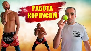 Отработка защиты в Боксе ММА и Муай Тай обучение. Работа корпусом, тренировка с теннисным мячом бокс