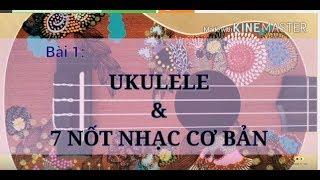 Học Ukulele nên học gì? Học nốt Ukulele- Cao Tiểu Yêu - C G Am F