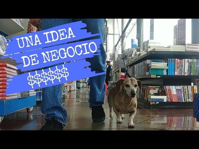 Vlog #1: La idea de negocio que descubrí caminando con mi perro | Librería PetFriendly