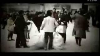 郁可唯 Yu Kewei - 回家 郁金香自制MV