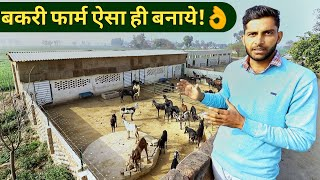 मॉडर्न बकरी फार्म ऐसे बनाये|How to Make/Start Goat Farm in hindi|Shed design India 2019