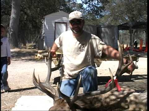 Archery Tule Elk Hunt - The Pendleton Sportsman - Ft. Hunter Liggett, Calif. - Part 2 Of 2