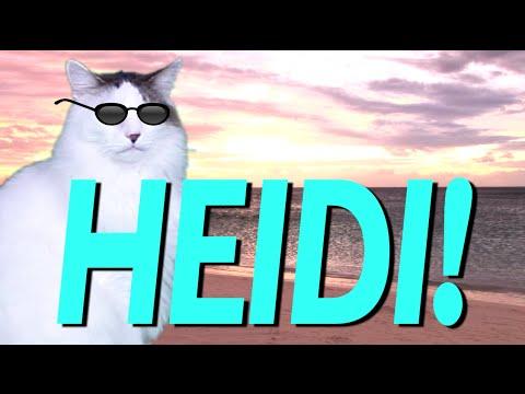 HAPPY BIRTHDAY HEIDI EPIC CAT Happy Birthday Song YouTube