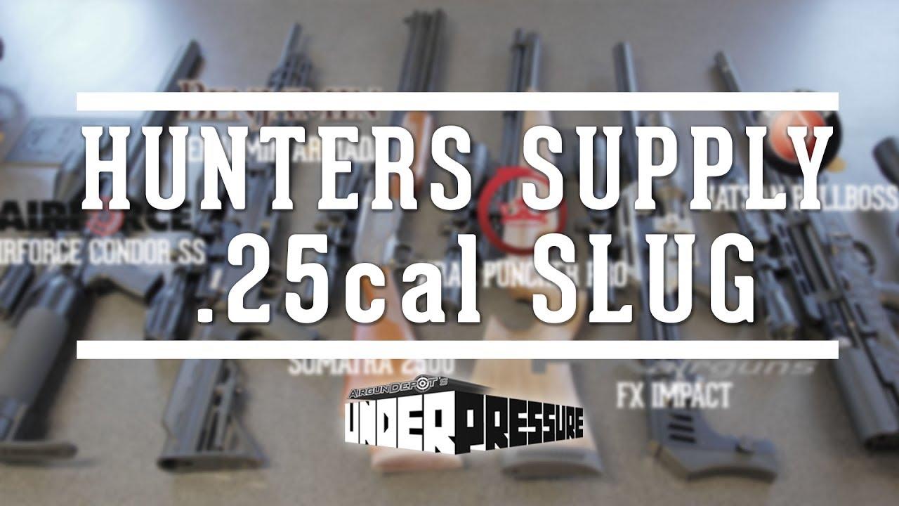 New  25 cal Airgun Hunting Slugs