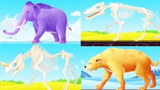 Colorful Game - Fossils Digging - Best Games for Kids - Android Gameplay HD