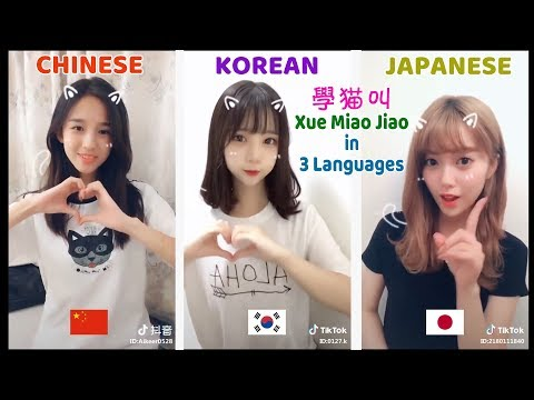 Xue Mao Jiao (学猫叫 Learn To Meow) Chinese Japanese Korean - Which Version Is The Best? - Vol. 2